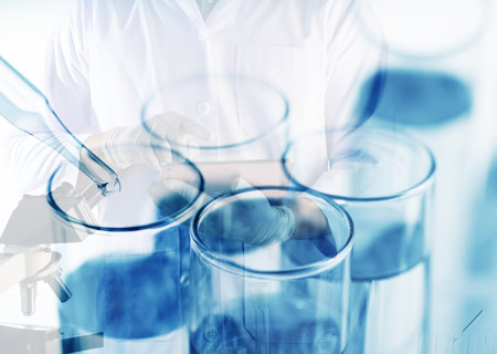 SAP Implementation Support Services for Chemicals