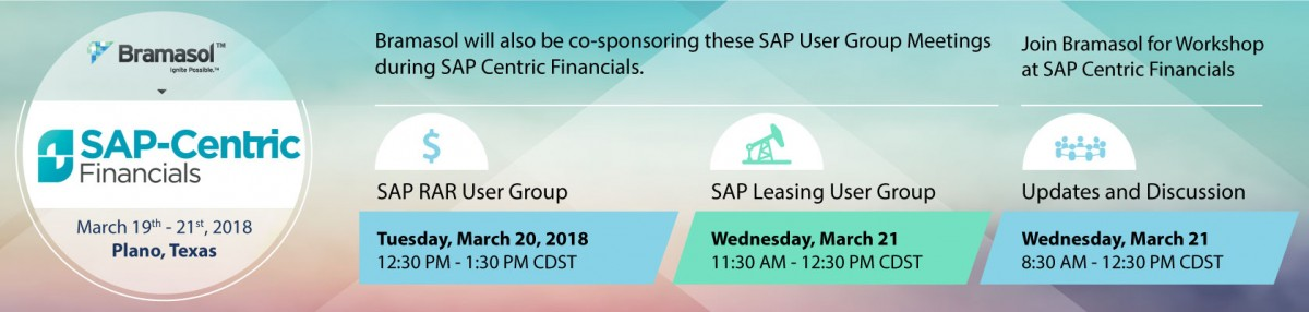 Bramasol SAP-Centric Financials