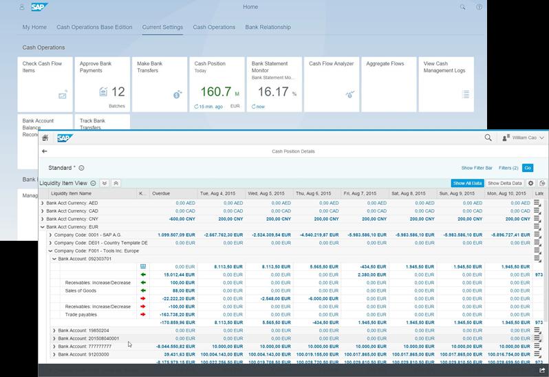 SAP Cash Management infographic