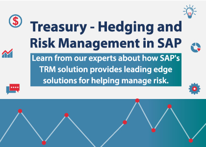 Treasury - Hedging and Risk Management in SAP