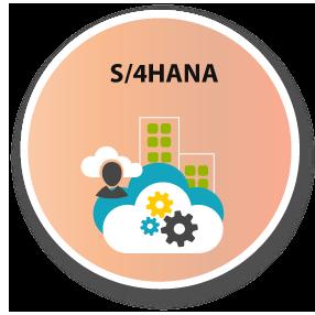 S/4HANA Info graphic