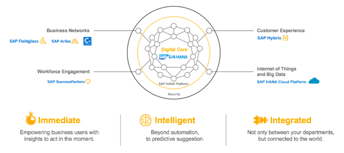How does SAP S/4HANA fit SAP's digital business framework?